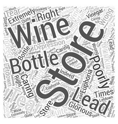 Storing And Caring For Wine Word Cloud Concept vector image vector image