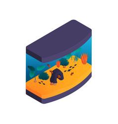 Aquarium with fishes composition vector
