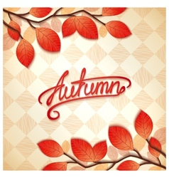 Colorful autumn card vector