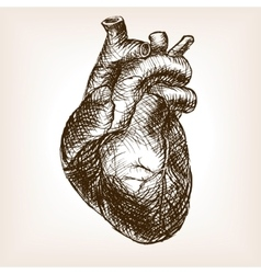 Human heart sketch style vector