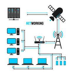 network map vector image