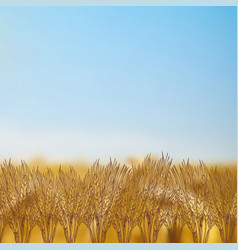 Cereal blurred background vector