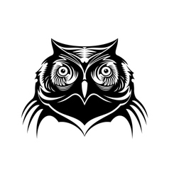 Head of a wise old owl vector image