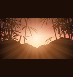 bamboo against sunset sky vector image