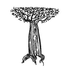 hand drawn sketch of tree on vector image