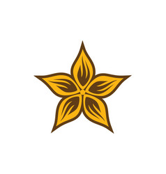 Star leaf decoration logo vector
