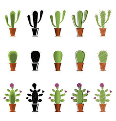 set of cacti in different styles vector image