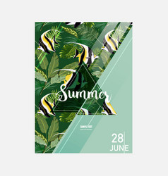 brochure template tropical fish summer graphic vector image vector image