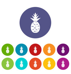 pineapple set icons vector image