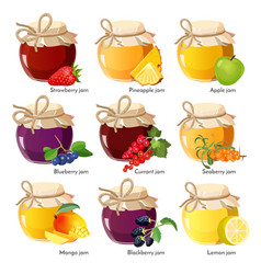 jars with red strawberry healthy pineapple apple vector image vector image