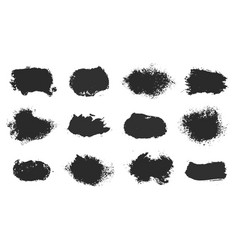 hand drawn ink design elements sponge vector image
