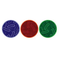 micro bacterium circles vector image