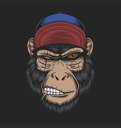 monkey head cap vector image