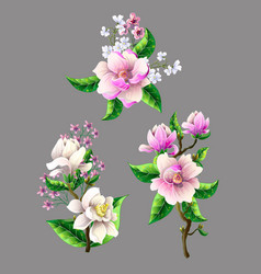 Set of bouquets magnolia flowers isolated vector