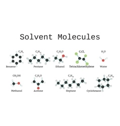 Solvent molecules set vector