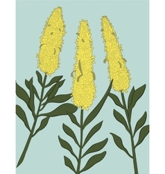 three yellow flowers in modern flat style vector image