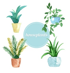 Watercolor set of house plants vector