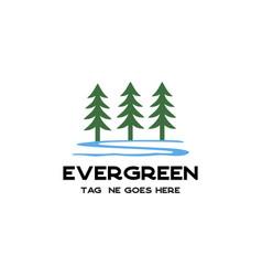 evergreen tree logo vector image