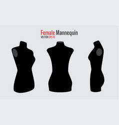 front and side mannequins vector image