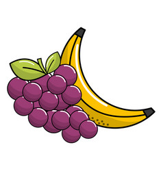 Grape and babana fruit icon vector