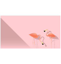 hello summer season background with flamingos vector image