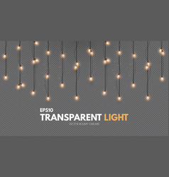 light garland on transparent background shining vector image