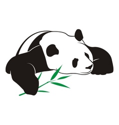 Panda with bamboo logo vector
