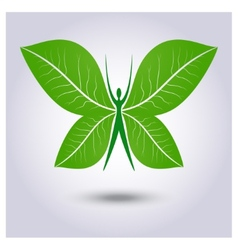 Eco logo green butterfly vector image