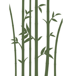 background with bamboo stems vector image