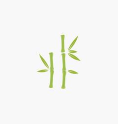bamboo tree logo vector image