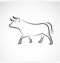bull design on white background wild animals vector image