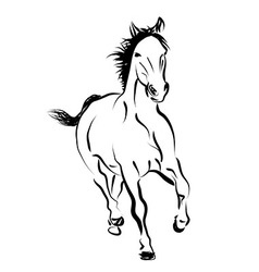 Line sketch of a running horse vector image vector image