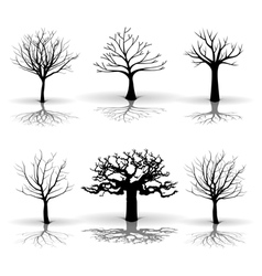 A set of tree vector image
