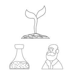 genetic and plant logo vector image