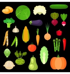 Selected healthful fresh vegetables flat icons vector image