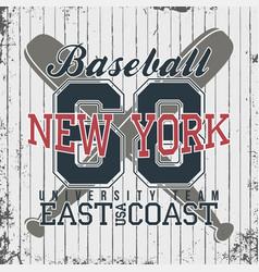new york baseball sportswear emblem baseball vector image