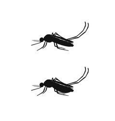 mosquito black silhouettes vector image vector image