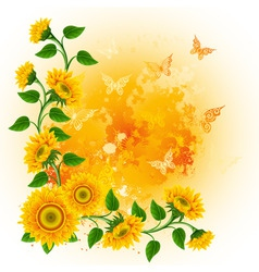 orange background with sunflowers and butterflies vector image