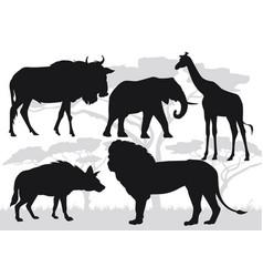 african savannah stock vector image vector image