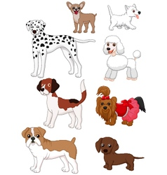 Cartoon dog collection vector image