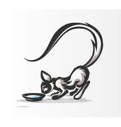 Cat drinking milk vector