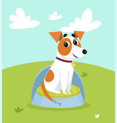 cute jack russell terrier sitting on dogs bed in vector image