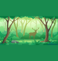 Forest landscape background with trees and deer vector