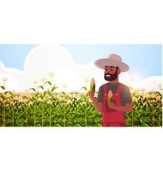 Man farmer holding corn cob african american vector