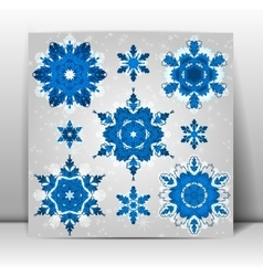 Snowflakes winter set for your design vector image