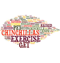 The effect of excercise for chinchillas text vector