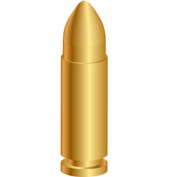 gold bullet vector image vector image