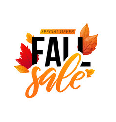 autumn discount sale text isolated on white vector image