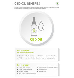 cbd oil benefits vertical business infographic vector image