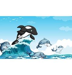 Dolphines swimming in ocean vector